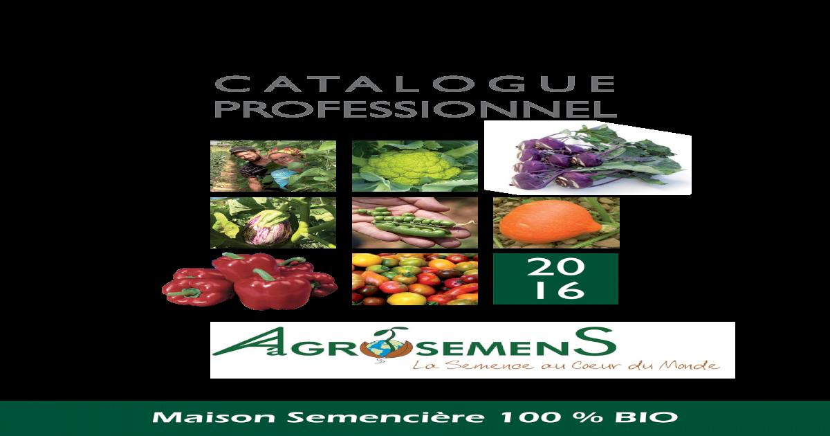 25 Graines Organique Légume-Chou-caraflex