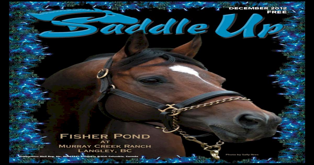 vaccination Cashel HORSE HELMET black prevent head injury trailer stall