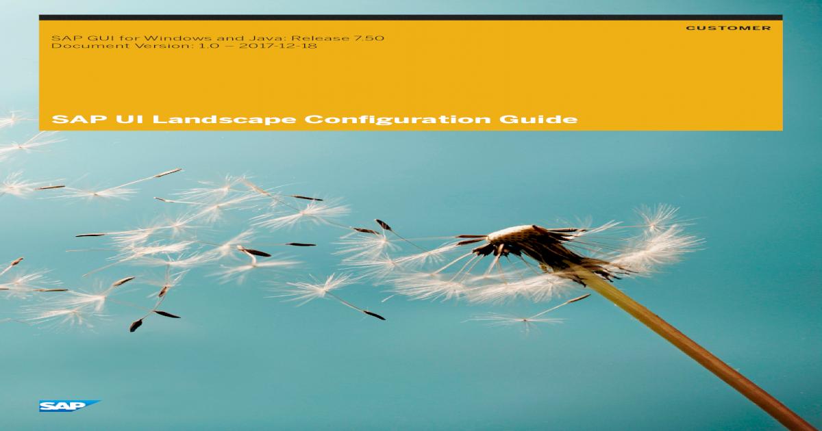 SAP UI Landscape Configuration Guide - a248 g  ??CUSTOMER