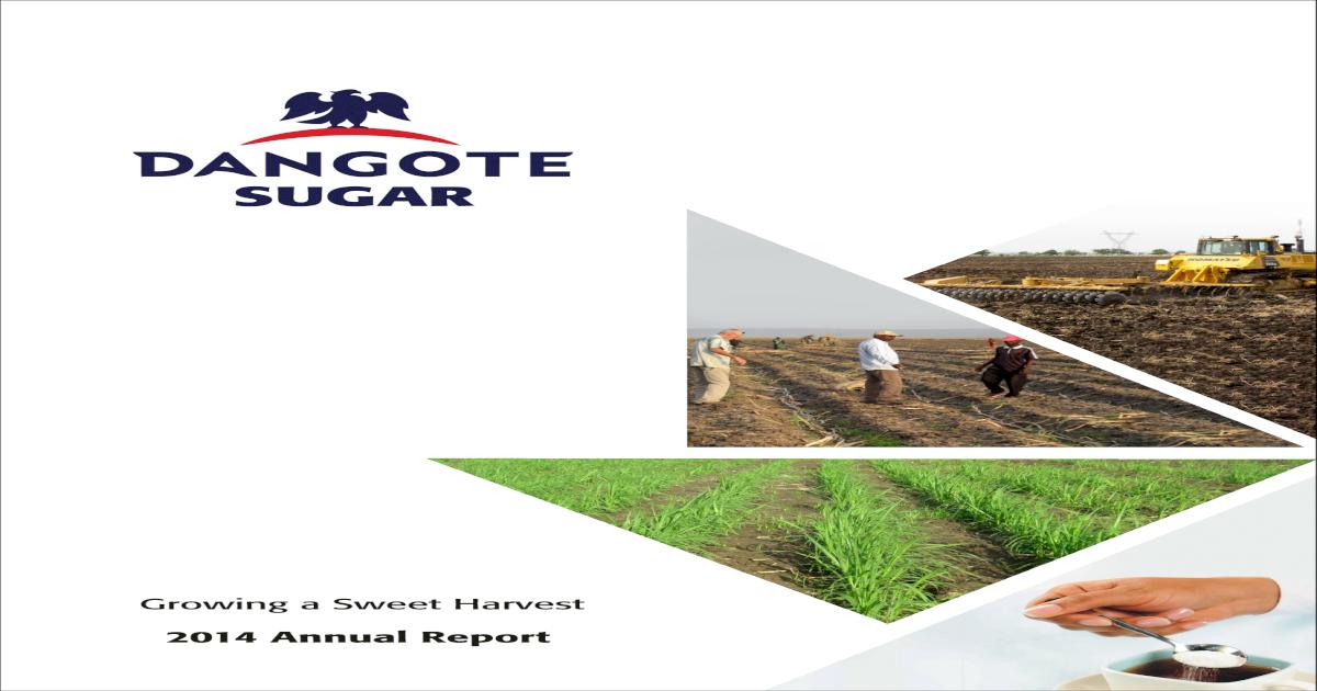 Dangote Sugar Annual Report 2014